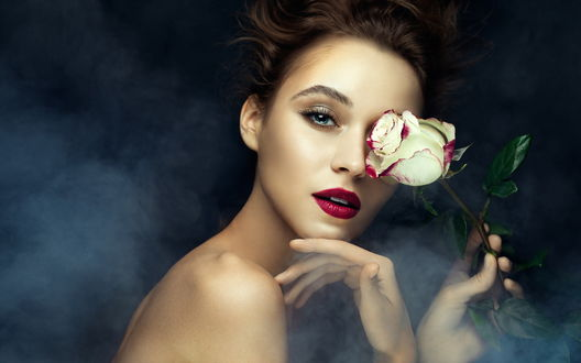 Обои Девушка с розой