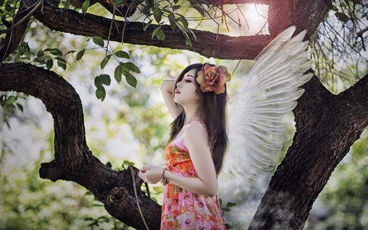 Обои Девушка-ангел стоит у дерева