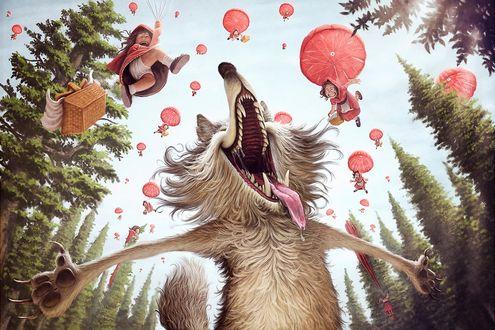 Обои Серый волк открыл рот от удивления на него спускается десант Красных Шапочек