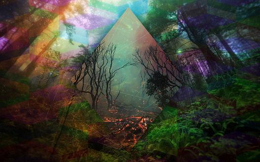 Обои Абстракция на тему леса
