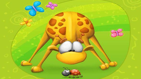 Обои Жираф нагнувшись смотрит на божью коровку