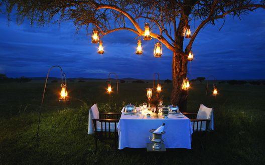 Обои Накрытый на две персоны столик, освещенный фонариками, под ветвями раскидистого дерева