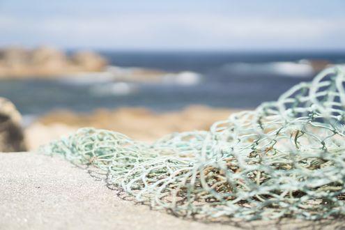 Обои Рыбачья сетка на берегу моря, by Maria Bellet