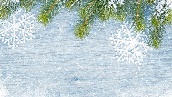 Обои Снежинки под ветками ели на голубом фоне