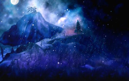 Обои Ночной новогодний лес