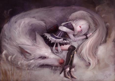 Обои Девушка и огромный белый волк, yukineko
