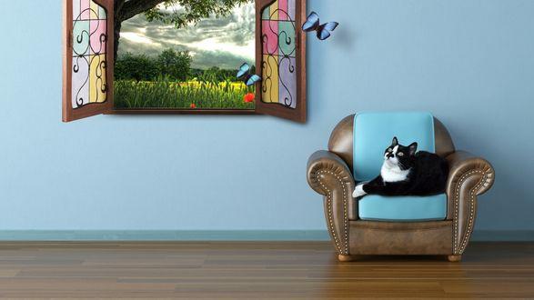 Обои Кот лежит на кресле возле окна с видом на природу
