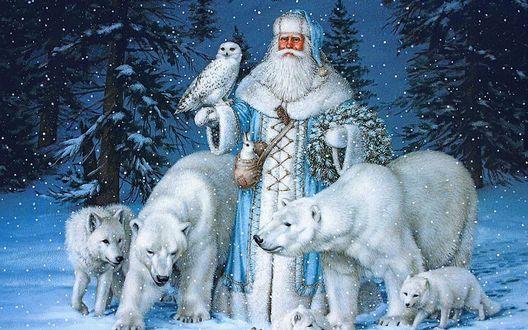 Обои Дед Мороз с животными в лесу, художница Elizabeth Goodrick Dillon