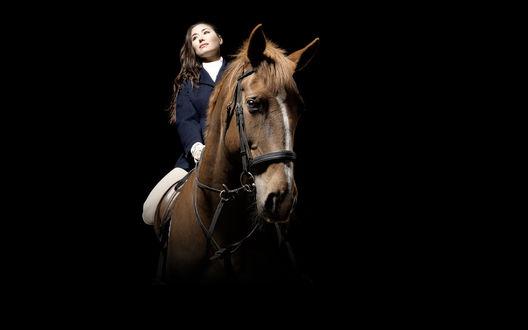 Обои Наездница на лошади на черном фоне