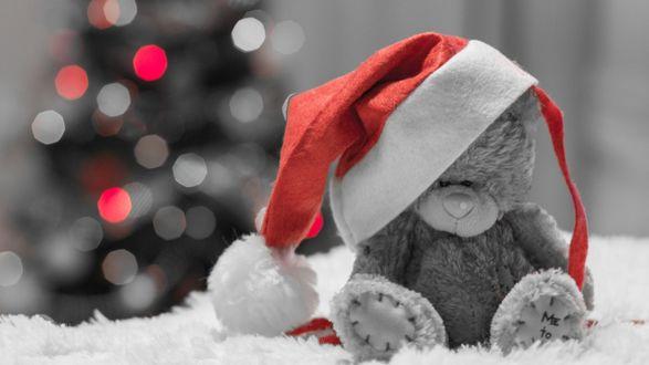 Обои Мишка в новогодней шапке на размытом фоне наряженной елки