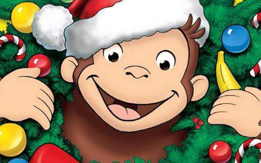 Обои Улыбающаяся обезьянка в новогодней шапочке