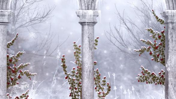 Обои Зимний пейзаж - колонны с сосульками на фоне красивых кустов украшенных инеем