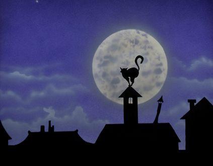 Обои Кошка на трубе на фоне полной луны, by TazPoltorak