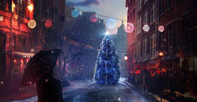 Обои Новогодняя елка на улице города, by t1na