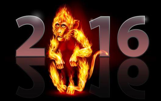 Обои 2016 год огненной обезьяны