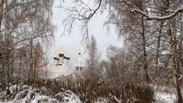 Обои Заснеженный храм с черными куполами вдалеке, вид с леса