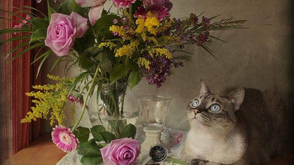 Обои Кошка лежит на столике у вазы с цветами