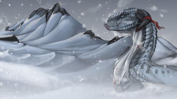 Обои Белый дракон среди снега