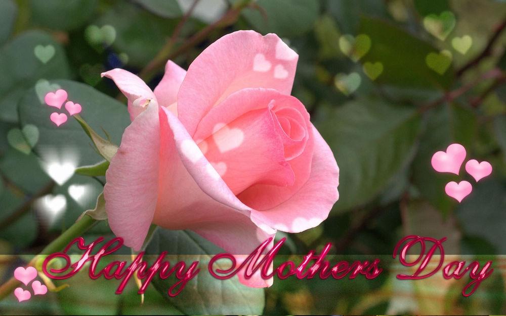 Картинки цветы на день матери красивые, прикольные тел пенсионер