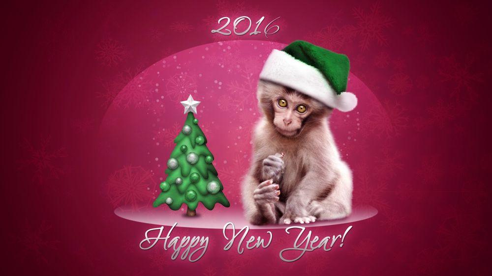 Обои для рабочего стола Обезьянка в новогодней шапке на розовом фоне (Happy New Year!)