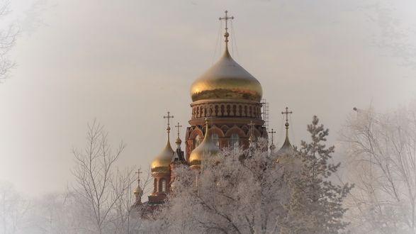 Обои Заснеженный храм с золотыми куполами на фоне неба
