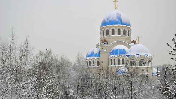 Обои Храм с голубыми куполами стоит посреди зимнего леса