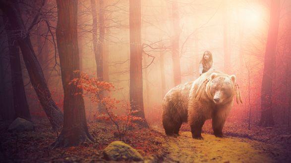 Обои Девочка верхом на медведе в лесу