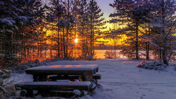 Обои Лавка в заснеженном лесу на восходе солнца