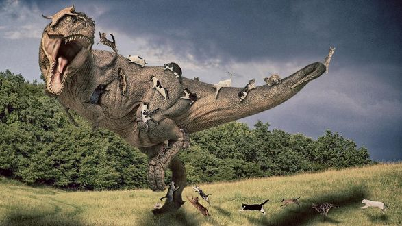 Обои Нападение кошек на тиранозавра