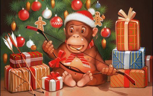 Обои Обезьянка с подарками сидит на полу возле новогодней елки