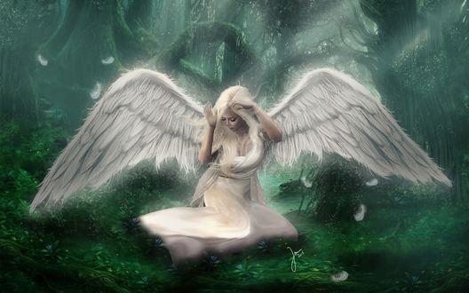 Обои Плачущая девушка-ангел сидит на траве в лесу