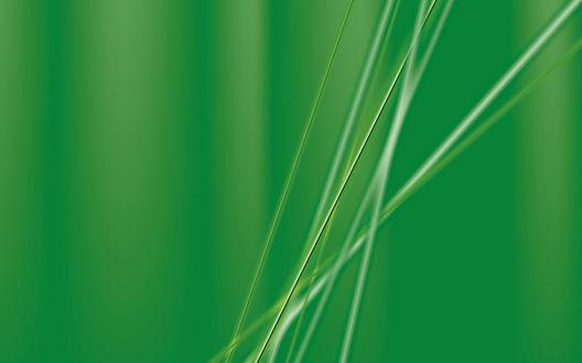 Обои Зеленые полоски на зеленом фоне
