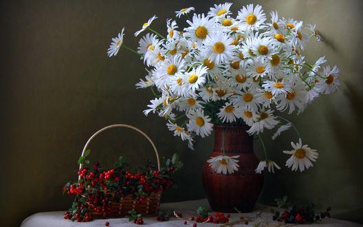 Обои Корзинка с брусникой и ваза с белыми ромашками стоят на столе