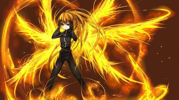 Обои Девушка с огнеными крыльями