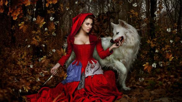 Обои Девушка в красном и волк