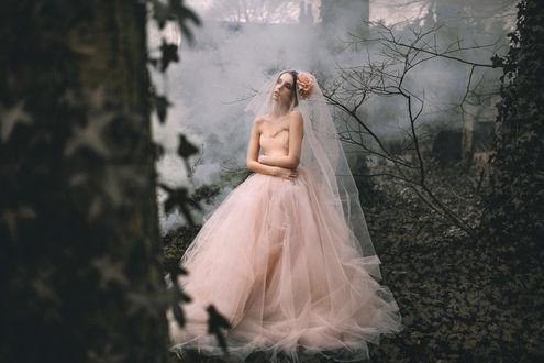 Обои Девушка в бледно-розовом свадебном наряде стоит посреди туманного мрачного леса