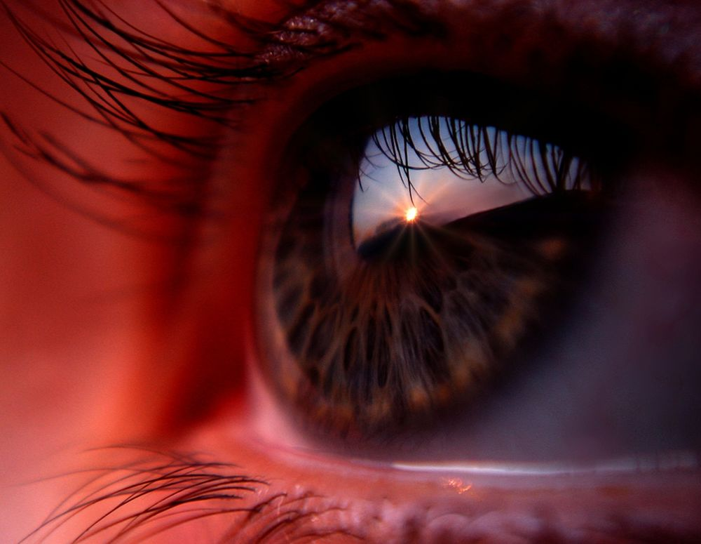 Карие глаза картинки на аву