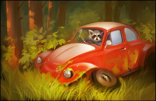 Обои Панда в автомобиле, by GaudiBuendia