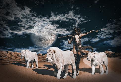 Обои Девушка с копьем и белые львы идут по пустыне, фотограф Сергей Сергеев