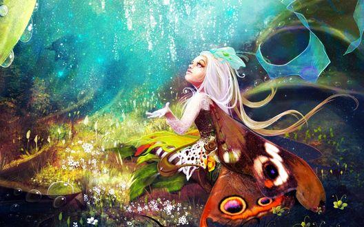 Обои Девочка бабочка - персонаж игры SkinsPrime