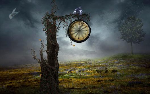 Обои Фантастический пейзаж, одинокое дерево с часами, указывающими полночь, на ветке дерева белые голуби
