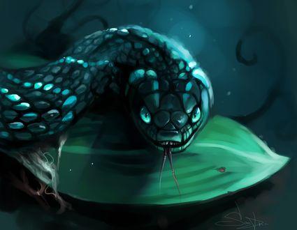 Обои Змея на листе, by SalamanDra-S