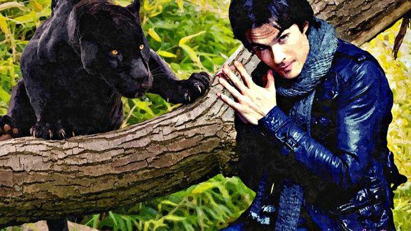 Обои Ян с пантерой / ian somerhalder