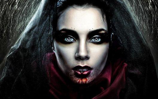 Обои Девушка вампир с черной фатой и окровавленным ртом