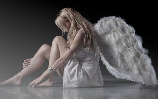 Обои Девушка-ангел сидит на полу
