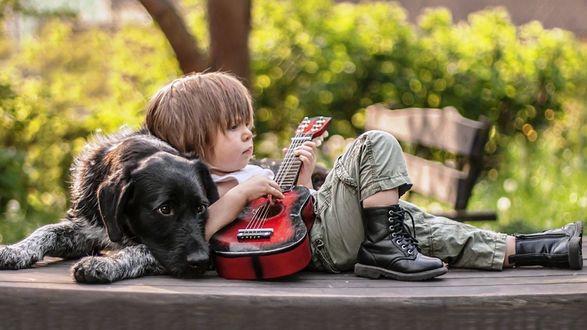 Обои Мальчик с гитарой и большой пес рядом