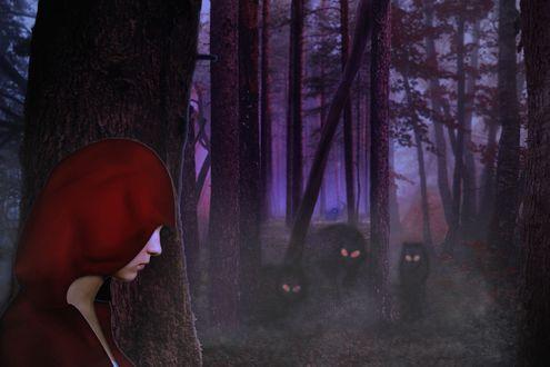 Обои Красная шапочка в лесу