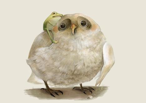Обои Лягушка сидит на сове и нежно к ней прижимается