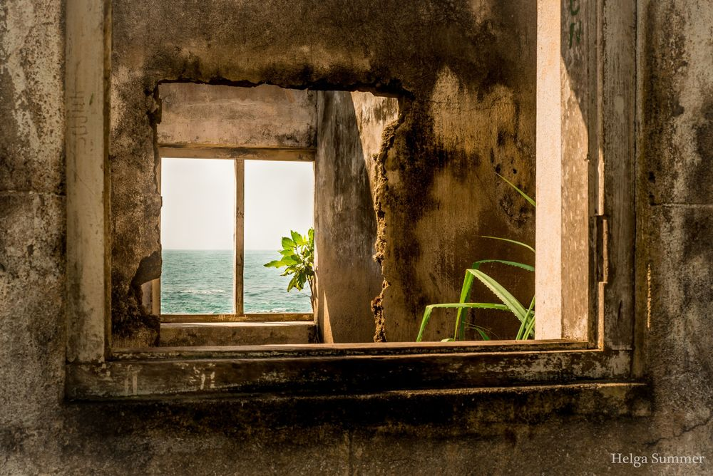 Обои для рабочего стола Сквозь оконные отверстия видны море и цветы, by Helga Summer