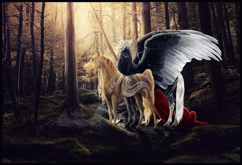 Обои Красивая влюбленная пара лошадей стоит в лесу, by Nikkayla